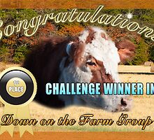 Banner for Down on the Farm 1st place winner by imagetj