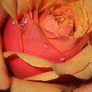 Tears Of Joy by naturelover