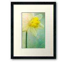 Sunshine and a little flower Framed Print