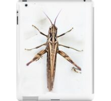 Bronze hopper iPad Case/Skin