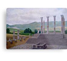 Ruins of Volubilis near Moulay Idris, Morocco Metal Print