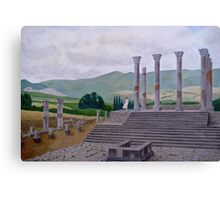 Ruins of Volubilis near Moulay Idris, Morocco Canvas Print
