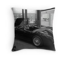 Down Time Throw Pillow