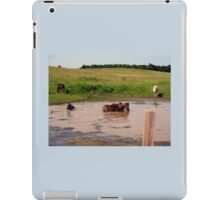 """'Bud, hey, Bud... check out Sam, behind us:  I think he's lost it. Watcha think?'""... prints and products  iPad Case/Skin"