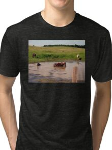 """'Bud, hey, Bud... check out Sam, behind us:  I think he's lost it. Watcha think?'""... prints and products  Tri-blend T-Shirt"