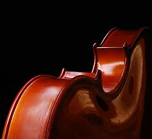 Symphony of curves by Bob Shupe