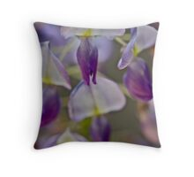 My garden - Wisteria sinensis (Chinese Wisteria) . by Andrzej Goszcz . Favorites: 3 Views: 622 .Thanks !!! Throw Pillow