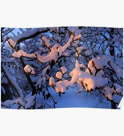 Suntanning snow Poster