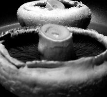 Tasty Fungilicious by dawnandchris