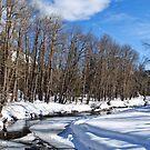 Frozen River by NancyC
