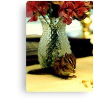 Chipmunk Heaven Canvas Print