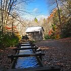 Mingus Mill, North Carolina  by lynell