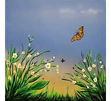 Butterfly Peace Photographic Print
