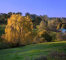 Ferguson Valley Cottage by Craig A. White (Australia)