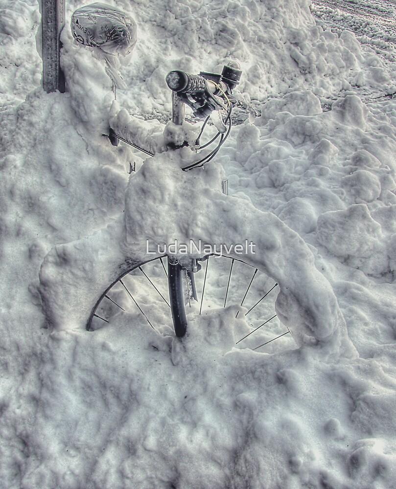 Bike by LudaNayvelt