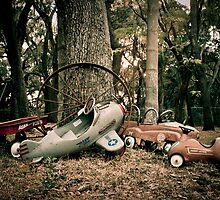 Memories of Endless Fun with Wheels! by Janis Lee Colon