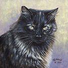 Reece - Feral Cat at Rockaway by artbyakiko