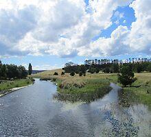 The Murrumbidgee River. by shortshooter-Al