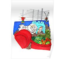 Guinea Pigs in a cage Poster