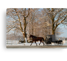 Horse and Buggy on a Wintery Morning Canvas Print