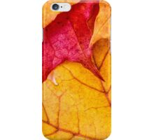 Red maple leaves background iPhone Case/Skin