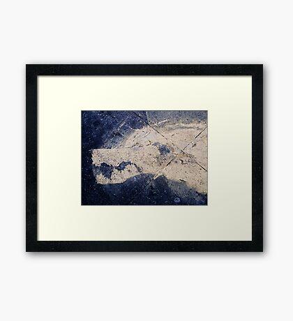Pavement Wolf Framed Print