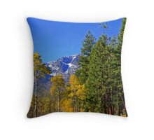 """Sky Blue"" Throw Pillow"