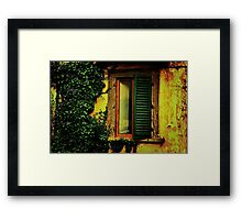 Old World Window Framed Print