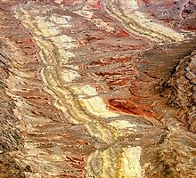 Nevada in the desert just outside of Las Vegas by barnsis