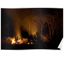 Trees by firelight Poster