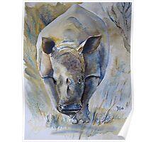 Rhino Sketch Poster
