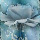 Feeling Blue by Rozalia Toth