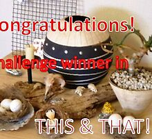 """Challenge Winner Banner for """"This & That"""" by Maree  Clarkson"""