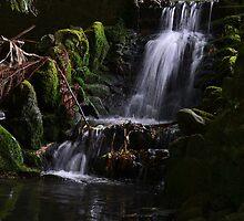 The Waterfall by Linda Cutche