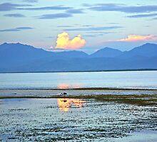 Marshland Dawn 2 by Raoul Isidro