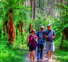 walking to keppel falls by ashara