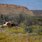Old Kingswood, West MacDonnell National Park, Central Australia by DashTravels