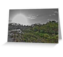 Mangrove Sunset HDR Greeting Card