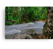 The Promise Land. Canvas Print