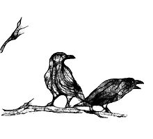 2 ravens by Marlies Odehnal