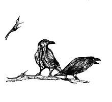 2 ravens Photographic Print
