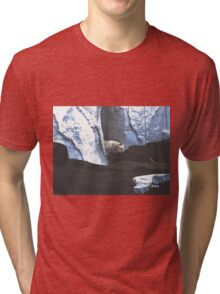 Sleeping Giant Tri-blend T-Shirt