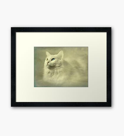 Seeing the world through her eyes Framed Print
