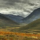 Strath Nethy...A Scottish Glen by VoluntaryRanger