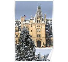 Biltmore in snow Poster