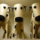 Bovine Army by Merrilyn Hunt