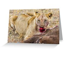 Africa - Lioness & kill Greeting Card