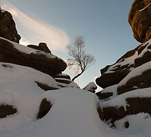 Brimham Rocks. by Nick Atkin