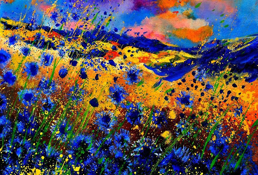 blue  cornflowers 746 by calimero