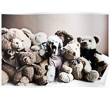 Teddy Collection Poster